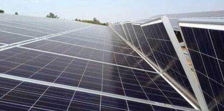 photovoltaikmodule-solarmodule